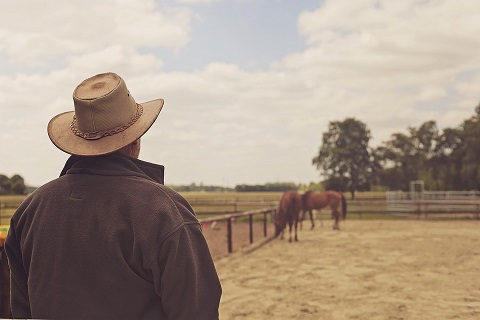 Cowboy. Photo taken by Fee Loona. PXBY. CC0.