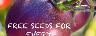 Groundbreaking Company Offers FREE Heirloom Seeds, When You Join Their Gardening Community